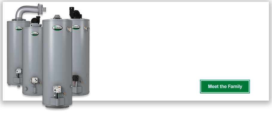 ProMax® Plus High Efficiency 40-Gallon Gas Water Heater